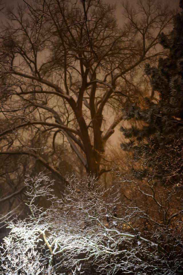 Ominous Snow
